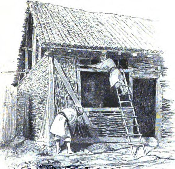 Construcţia unei case în Serbia